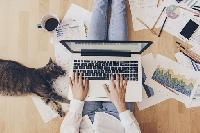 Перевірять квартиру, зроблять вдома офіс і каратимуть за недисциплінованість: Що передбачає законопроєкт про віддалену роботу в Україні